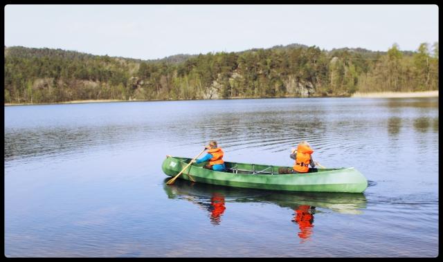 kano alene