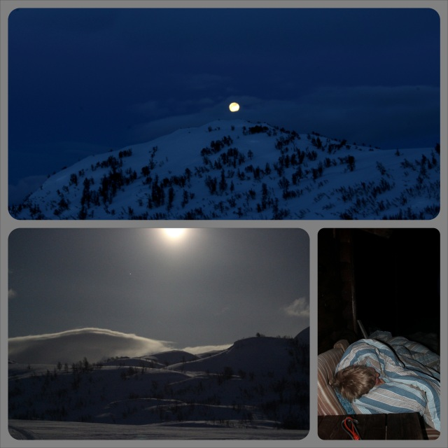 stjerne_collage