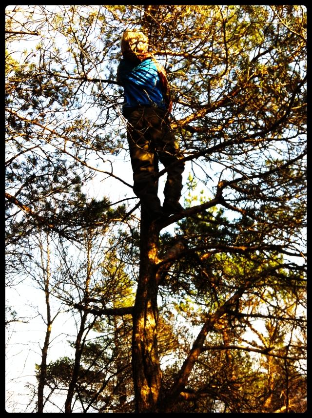 treklatring