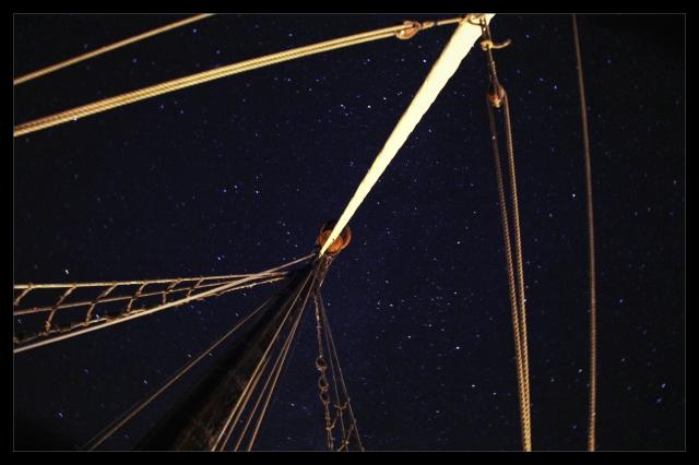 SY fredag stjerner