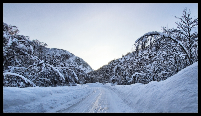 winterwonderland 2