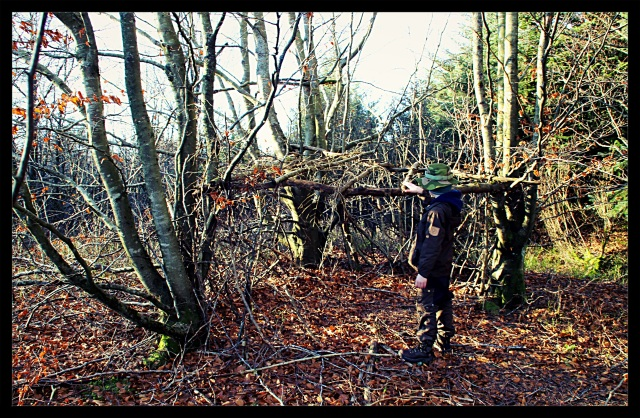 gapahuk i løvskog