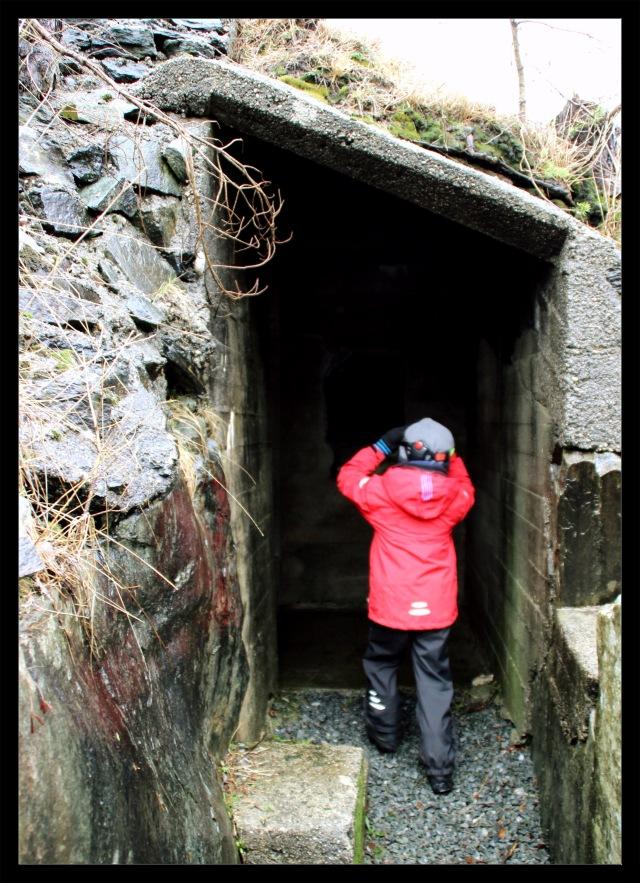 bunkers 7