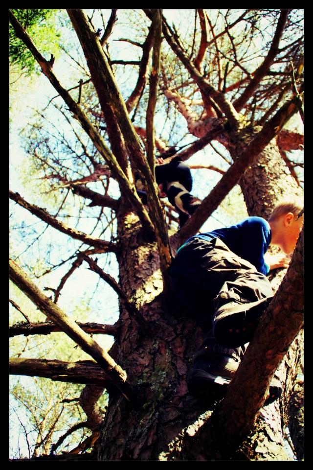 barnas turlag klatring