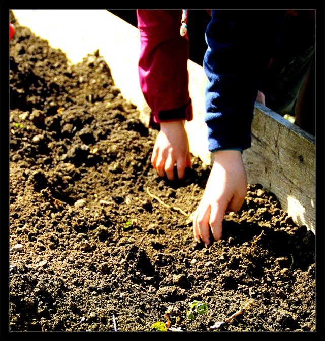 barnas turlag mark