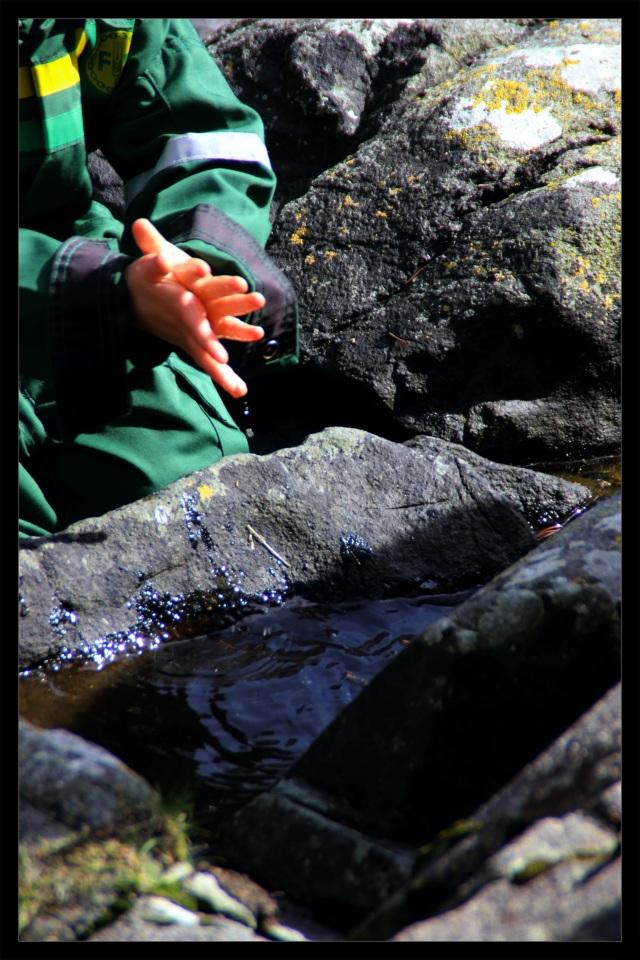 barnas turlag vann