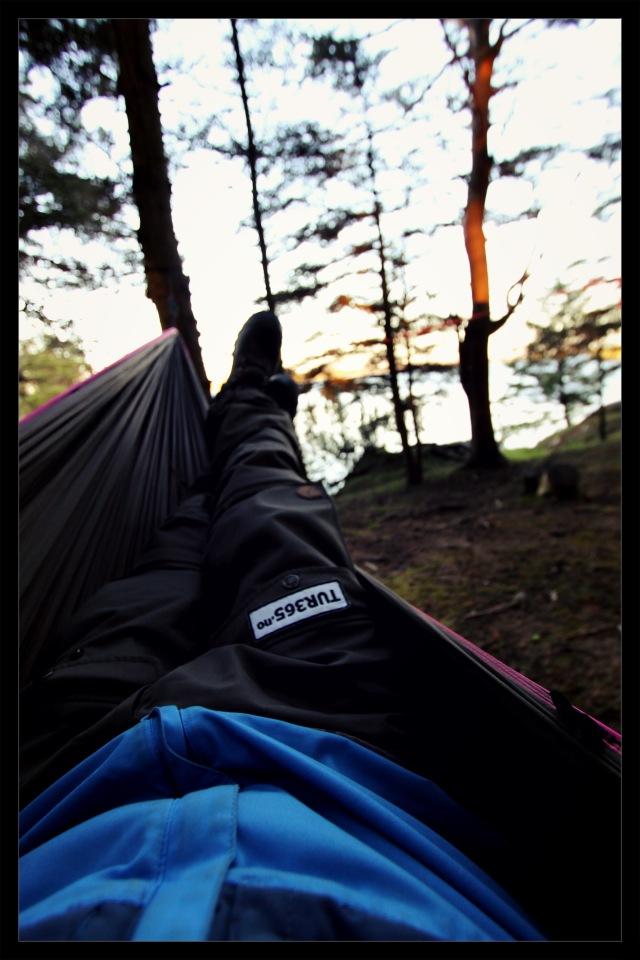 la siesta hammock