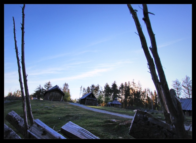 vikinggård