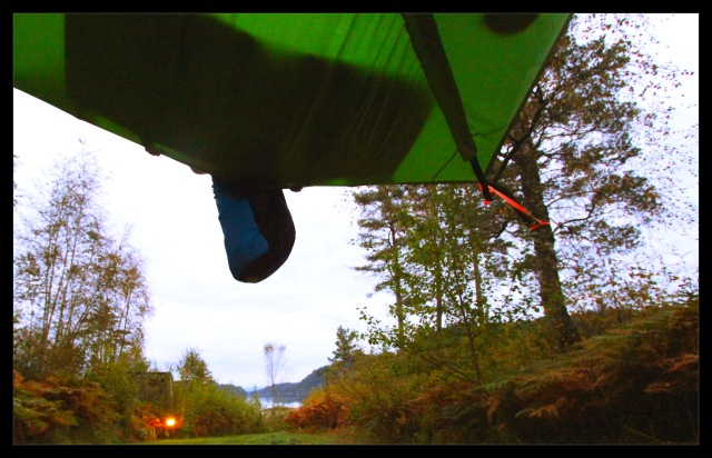 tentsile morning5