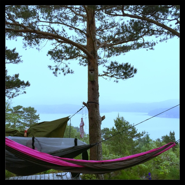 exped hammock