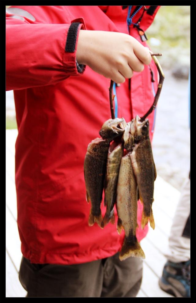 fisketur 1