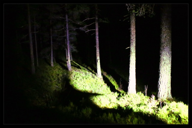 gapahuk natt 3