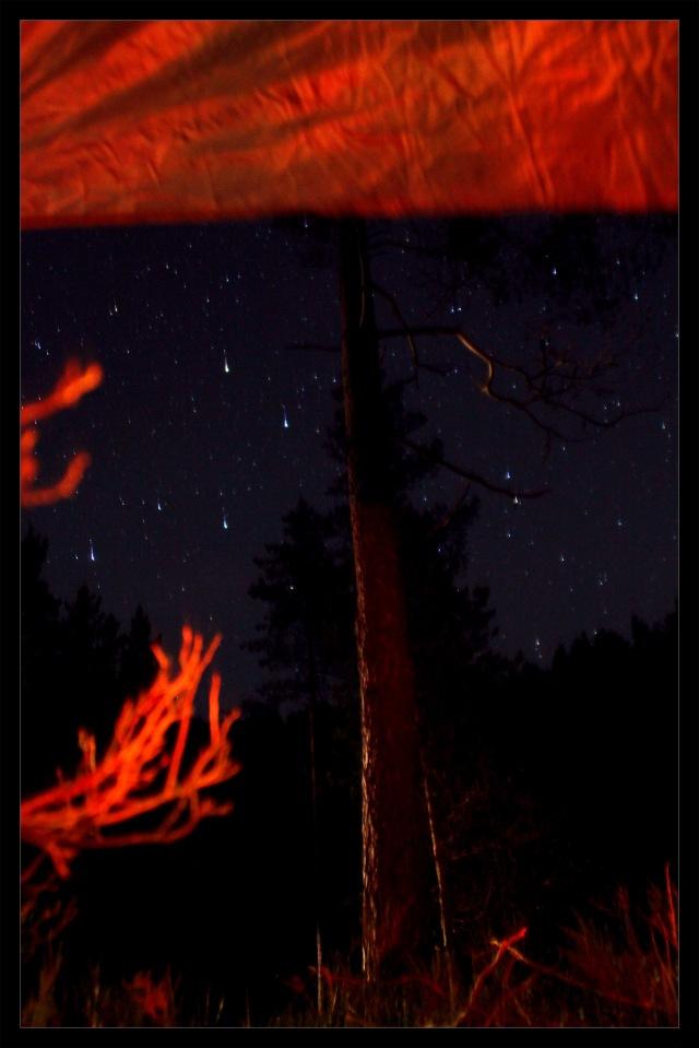stjernehimmel 2