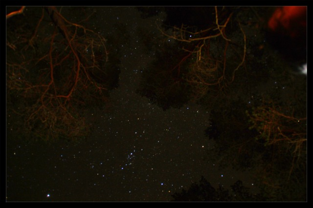 stjernehimmel 4