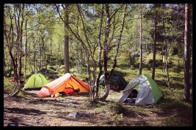 festivalcamp morgen
