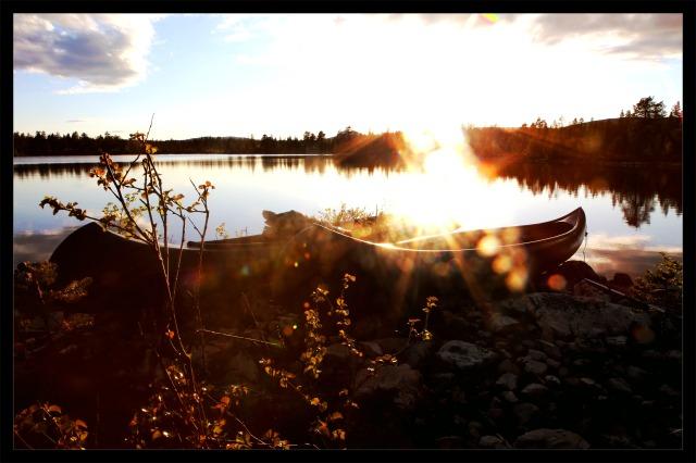 kano i motlys