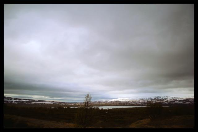 landskap 1